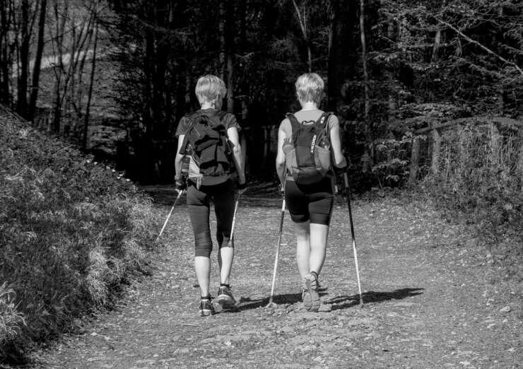 nordic-walking-740x522.jpg